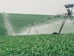 clean water resource for food growing